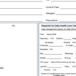 Nursing Shift Report Template