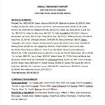 Treasurer Report Template