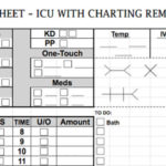 Charge Nurse Report Sheet Template
