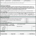 Sample Hr Audit Report Template