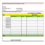 Weekly Status Report Template Excel