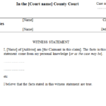 Expert Witness Report Template