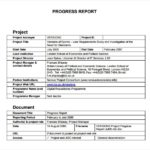 Progress Report Template Doc