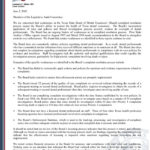 Internal Control Audit Report Template
