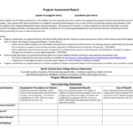 Report Assessment Template