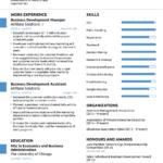 Resume Template Novoresume