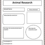 Research Report Template 4th Grade
